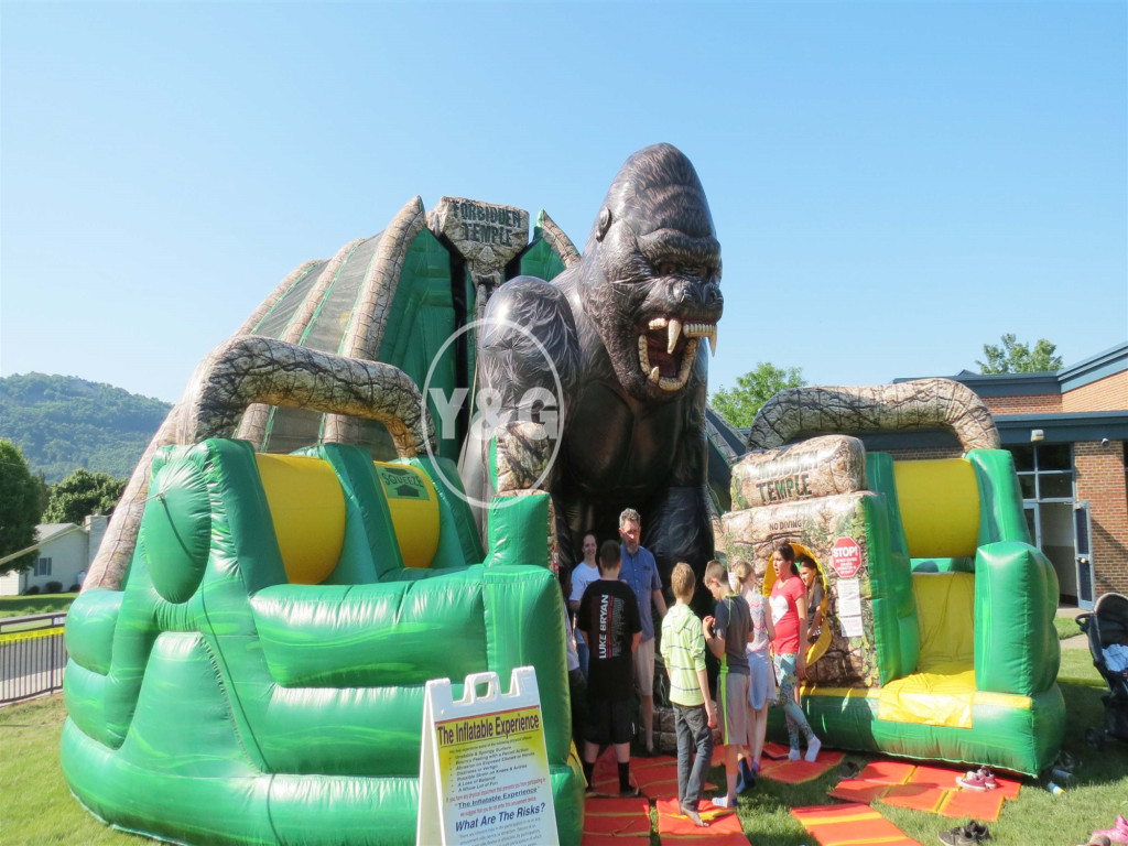 Best animal shapes theme bounce house and slide combo