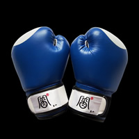 Blue boxing glovesGK030