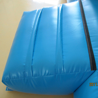inflatable bouncer jumpingGB484