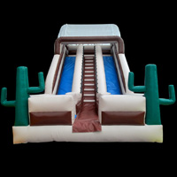 inflatable Cactus slideGI102