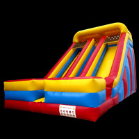 Inflatable Giant SlideGI156