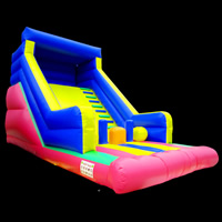 Commercial Inflatable Water SlidesGI151