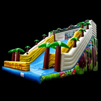 inflatable slideGI163