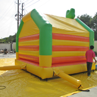 inflatable lizard bouncerGB538