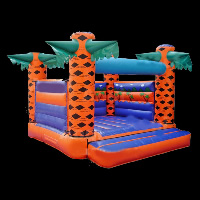 Inflatable Bouncers ManufacturersGB314