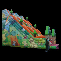 Rent Inflatable SlideGI110